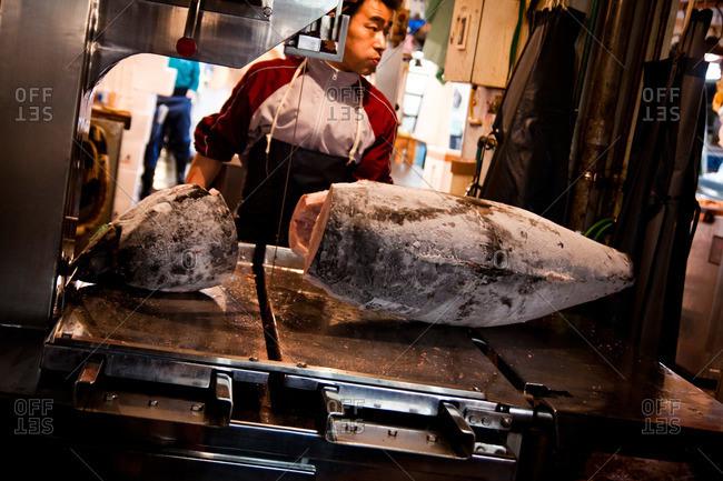 Tsukiji Fish Market - May 5, 2011: Man slicing a large fish with a band saw at the Tsukiji Market