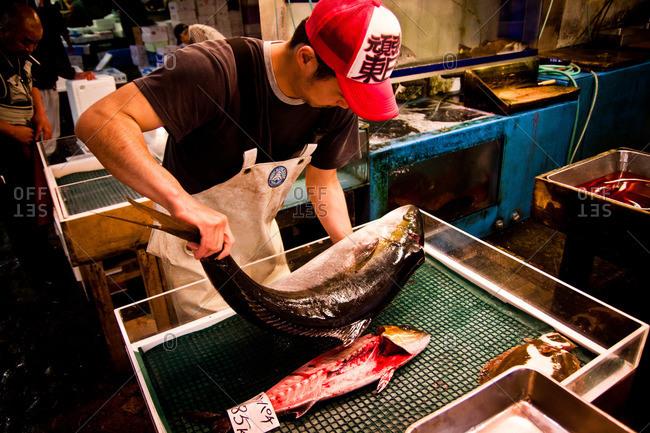 Tsukiji Fish Market - May 5, 2011: Man preparing to clean and gut a fish at the Tsukiji Market