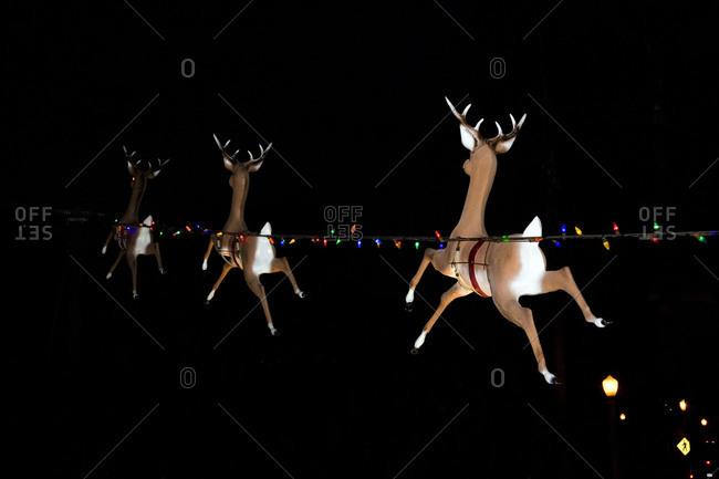 Reindeer and lights Christmas display