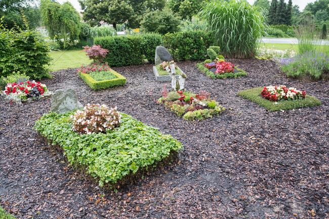 Green graveyard in garden center, Augsburg, Bavaria, Germany