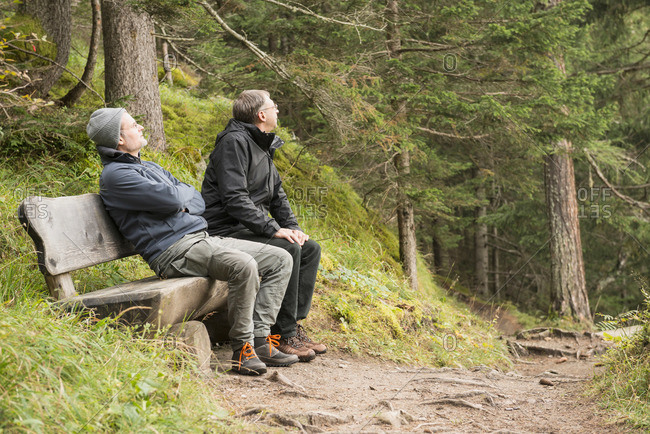 Two mature hikers resting on bench in forest, Austrian Alps, Carinthia, Austria