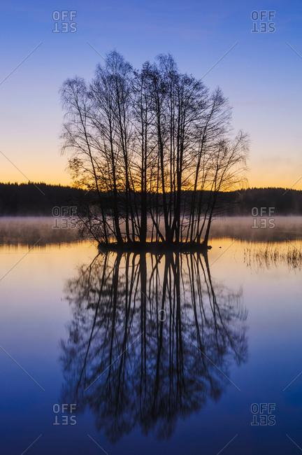 Trees on little island at sunset, Vastergotland