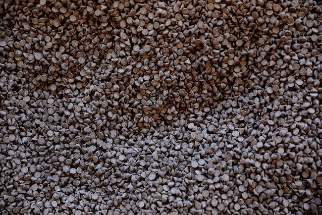 Overhead view of chocolate chips