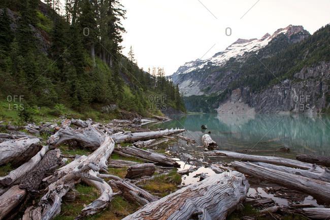 Log-littered shore of glacial lake below mountains