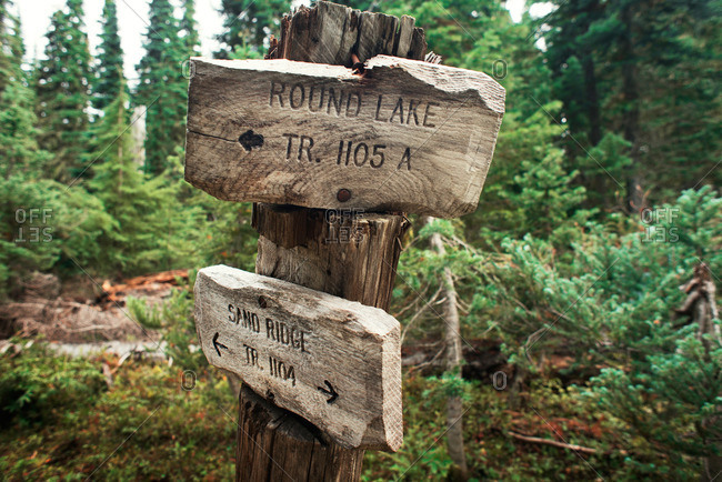 Trail signs in the William O. Douglas Wilderness area of Washington