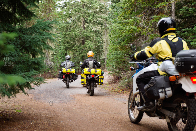 Group of motorcyclists on a forested road