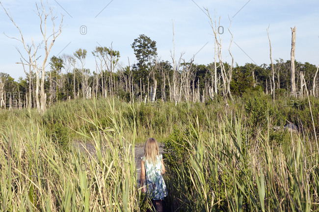 Girl in dress among coastal plants