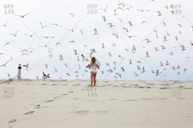 Girl watching seabirds on beach