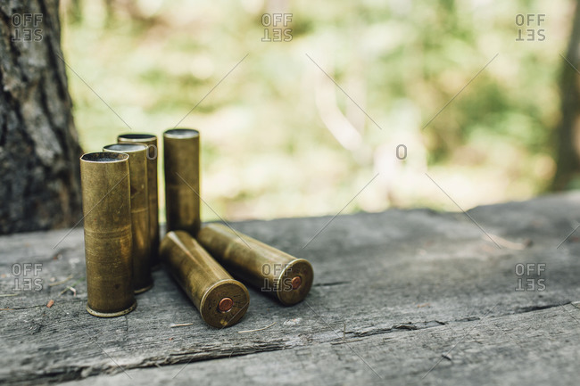 Close-up of bullet on bench at forest