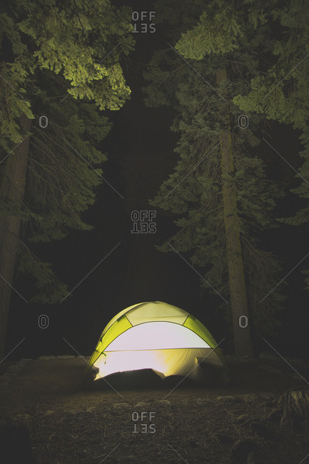 Illuminated tent in forest at night