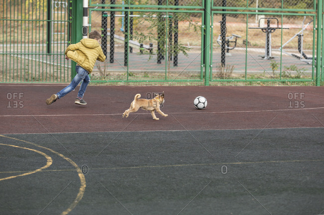 Boy and dog playing soccer at playground