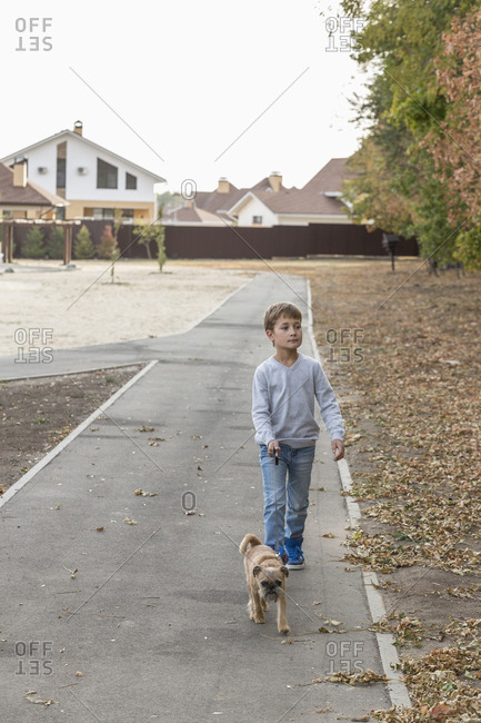 Boy walking with dog on footpath during autumn