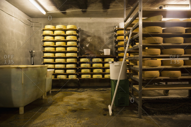 Interior of cheese factory