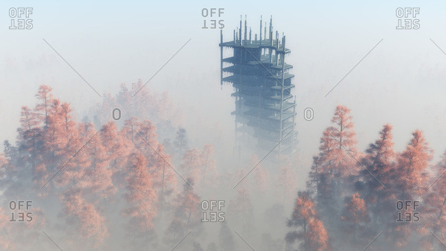 Demolished building in foggy autumn forest
