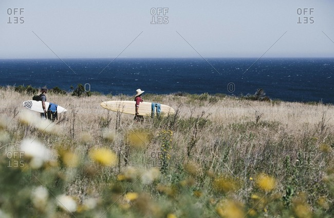 Men with surfboards on grassy coast