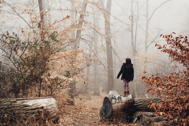 Girl on log in misty woods