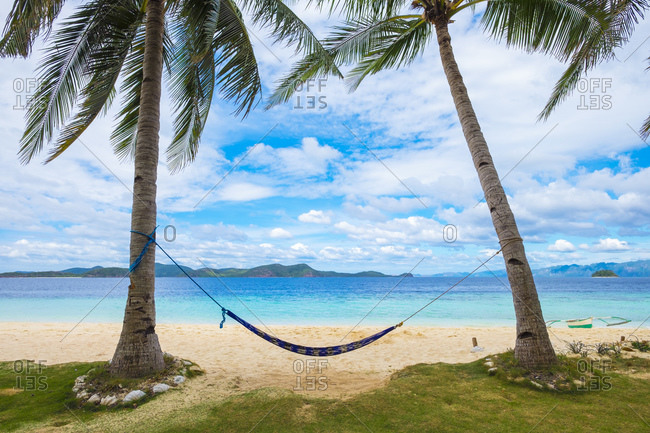 Empty hammock between two palm trees on tropical island