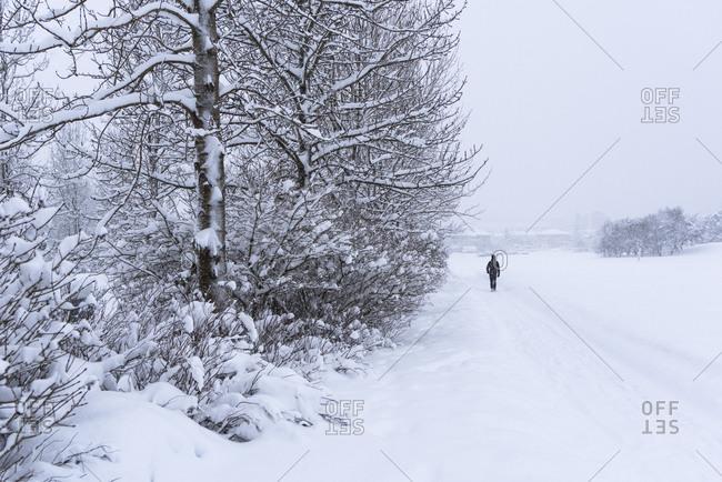 Lone person walking down a snowy path in Reykjavik, Iceland