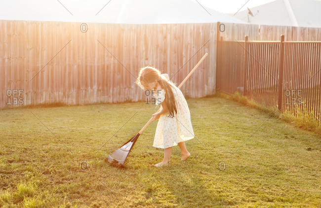 Girl raking cut grass in backyard