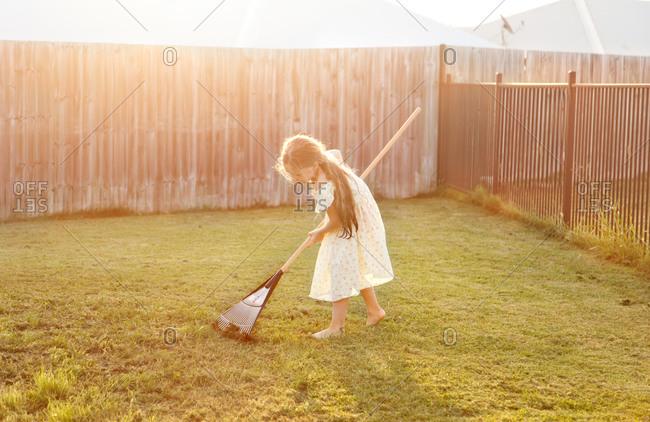 Girl raking cut grass in backyard