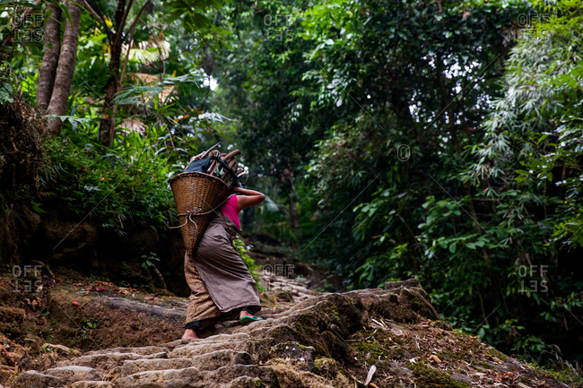 Lady carrying basket in the forest of Mawlynnong near Riwai village