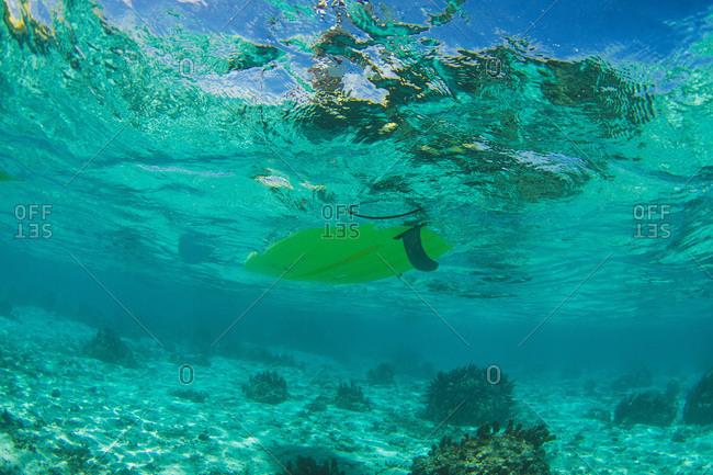 Underwater shot of a paddleboard in Tahiti