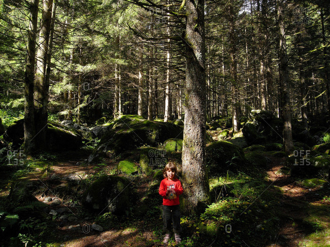 Child standing in Italian forest
