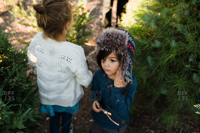 Two kids standing at a tree farm