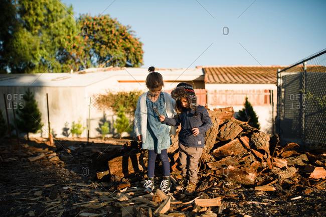 Kids by chopped wood pile