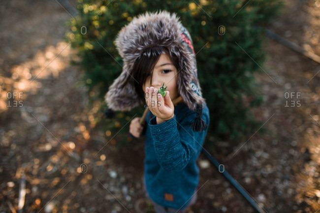 Child with vegetable at tree farm