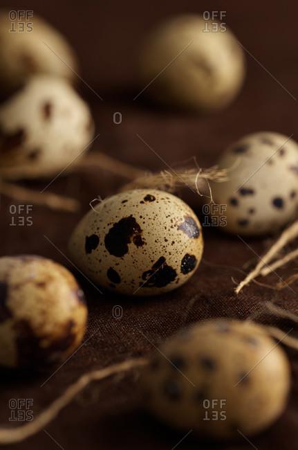 Whole quail eggs and twine