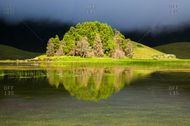 Island of trees reflected inside Corvo cauldron, Azores, Portugal