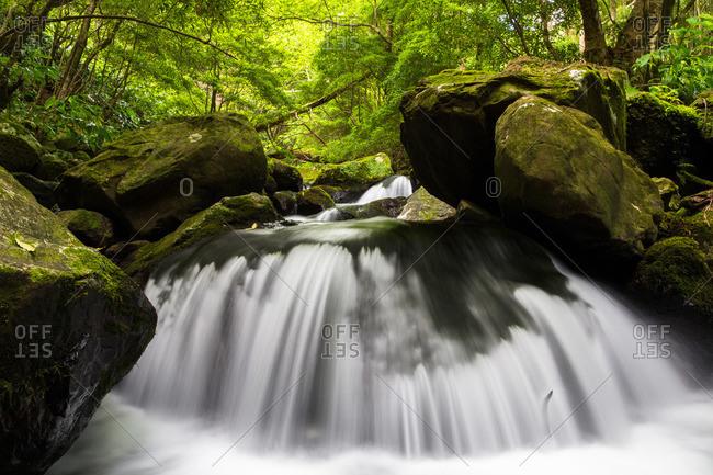 Ribeira da Cruz stream cascading over rocks, Flores Island, Portugal