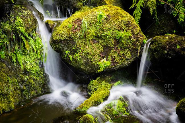 Small waterfall flowing over mossy rocks on Corvo Island, Portugal