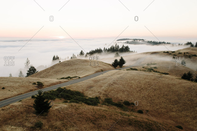 Fog and a road in Mount Tamalpais State Park in California