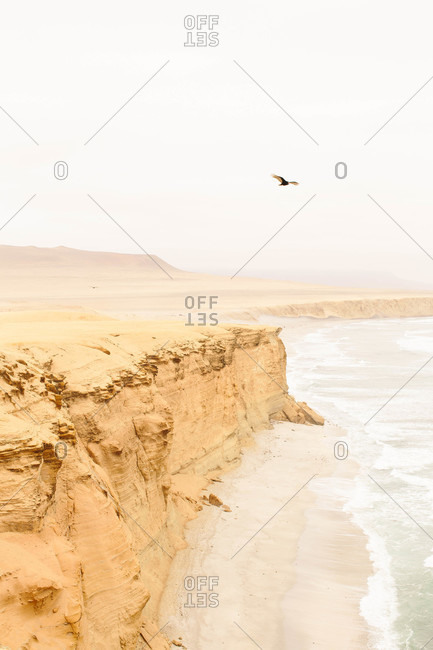 View of the coast in Paracas National Reserve in Peru