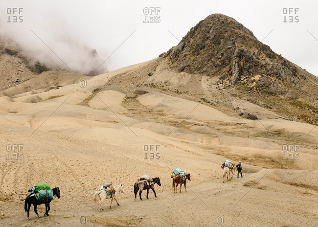 Trekking with horses near Ausangate in the Andes Mountains of Peru