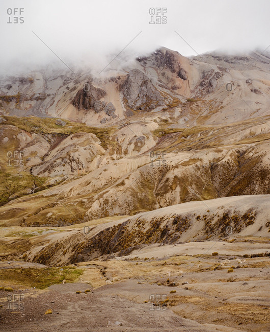 Mist and alpacas in Ausangate in the Andes Mountains of Peru