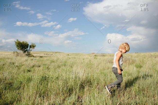 Boy walking in a field of tall grass