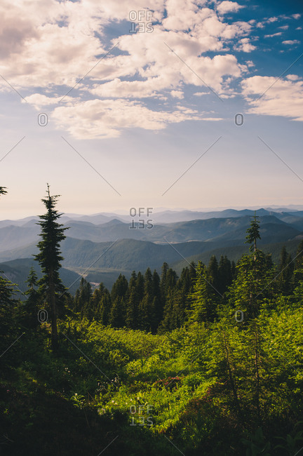 Forest covered mountains under a cloudy sky