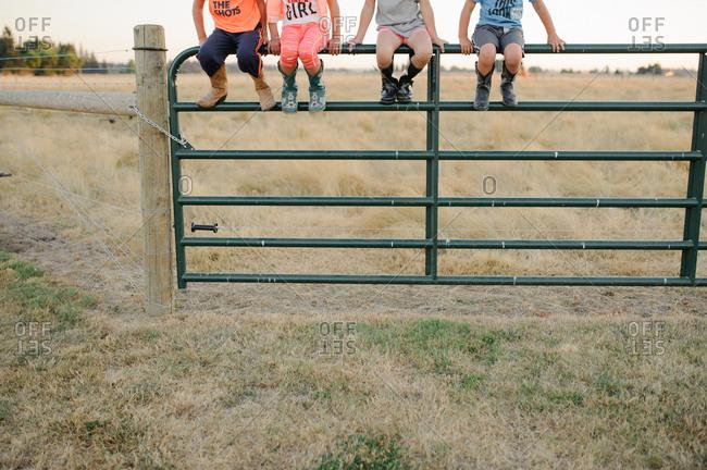 Children sitting on a metal gate