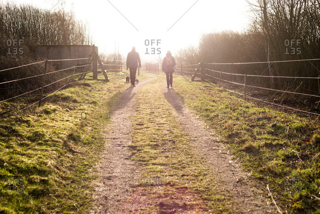 Couple walking their two small dogs down a path