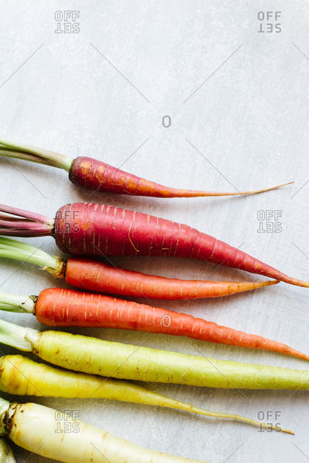 Still life of rainbow carrots on a light background