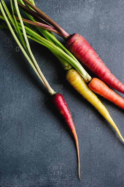 Still life of rainbow carrots on a dark background