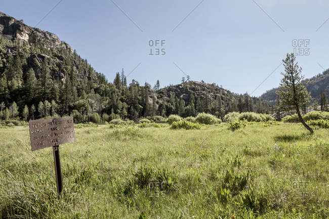 Sign in field in Yosemite National Park