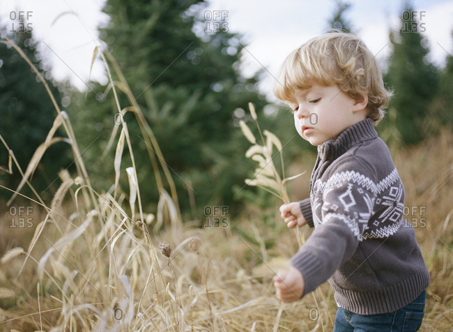 Little boy playing in a grassy field