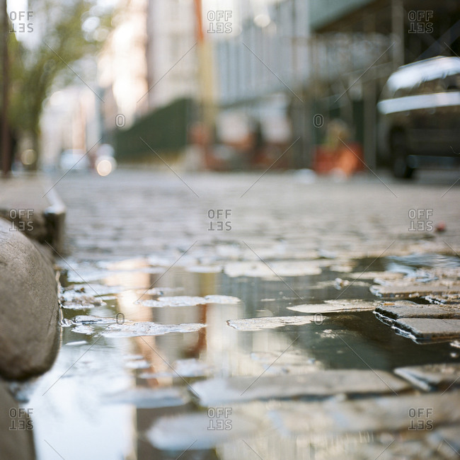 Puddle of water on a cobblestone street