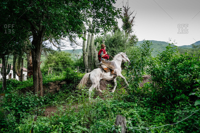 Salta Province, Argentina - January 6, 2012: Gaucho on a horse at an estancia near Guemes