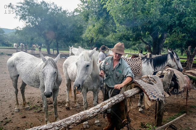 Salta Province, Argentina - January 6, 2012: Gauchos and horses at an estancia near Guemes