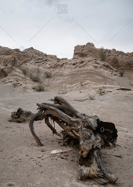 Desert in Valles Calchaquies between Cafayate and Cachi in Salta Province, Argentina